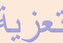Photo of تعزية: أبناء الشيخ محمد عالي بن محمذن لولي